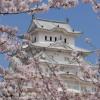 姫路城 (世界文化遺産・国宝) データ