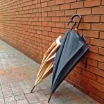 メンズの傘についてのあれこれ話